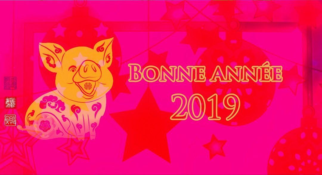 2019£-annee-cochon-de-terre