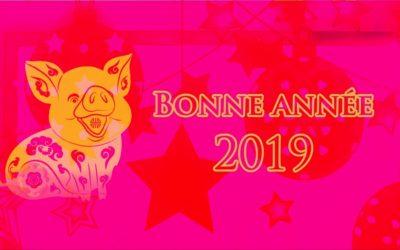 2019-ANNEE DU COCHON DE TERRE